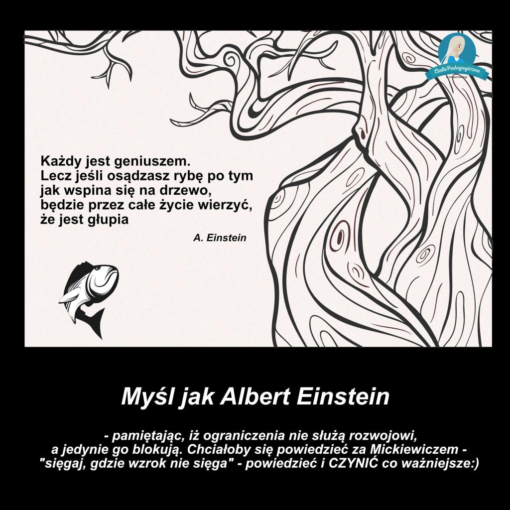 Mysl_jak_Albert_Einstein